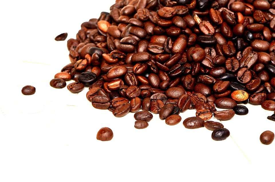 Vital Components For Coffee Beans